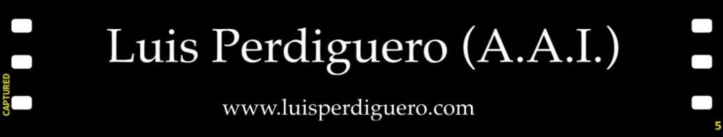 cropped-logo-www-luisperdiguero-com.jpg